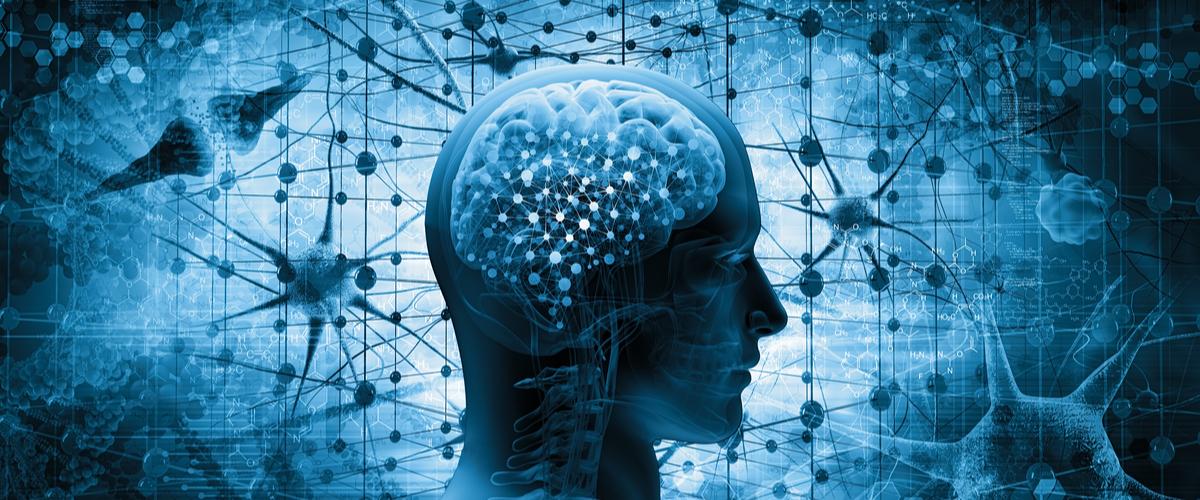 Welt-Alzheimertag 2019: Das vergessende Gedächtnis