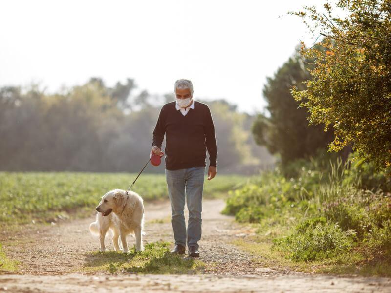 Älterer Mann geht mit seinem Hund auf Feldweg spazieren